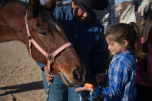 Get your child comfortable around horses with a great Kids Birthday Party.